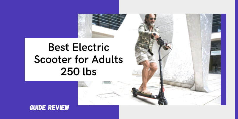 Best Electric Scooter for Adults 250 lbs